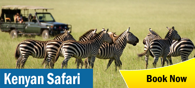 KENYAN SAFARI tour package planner